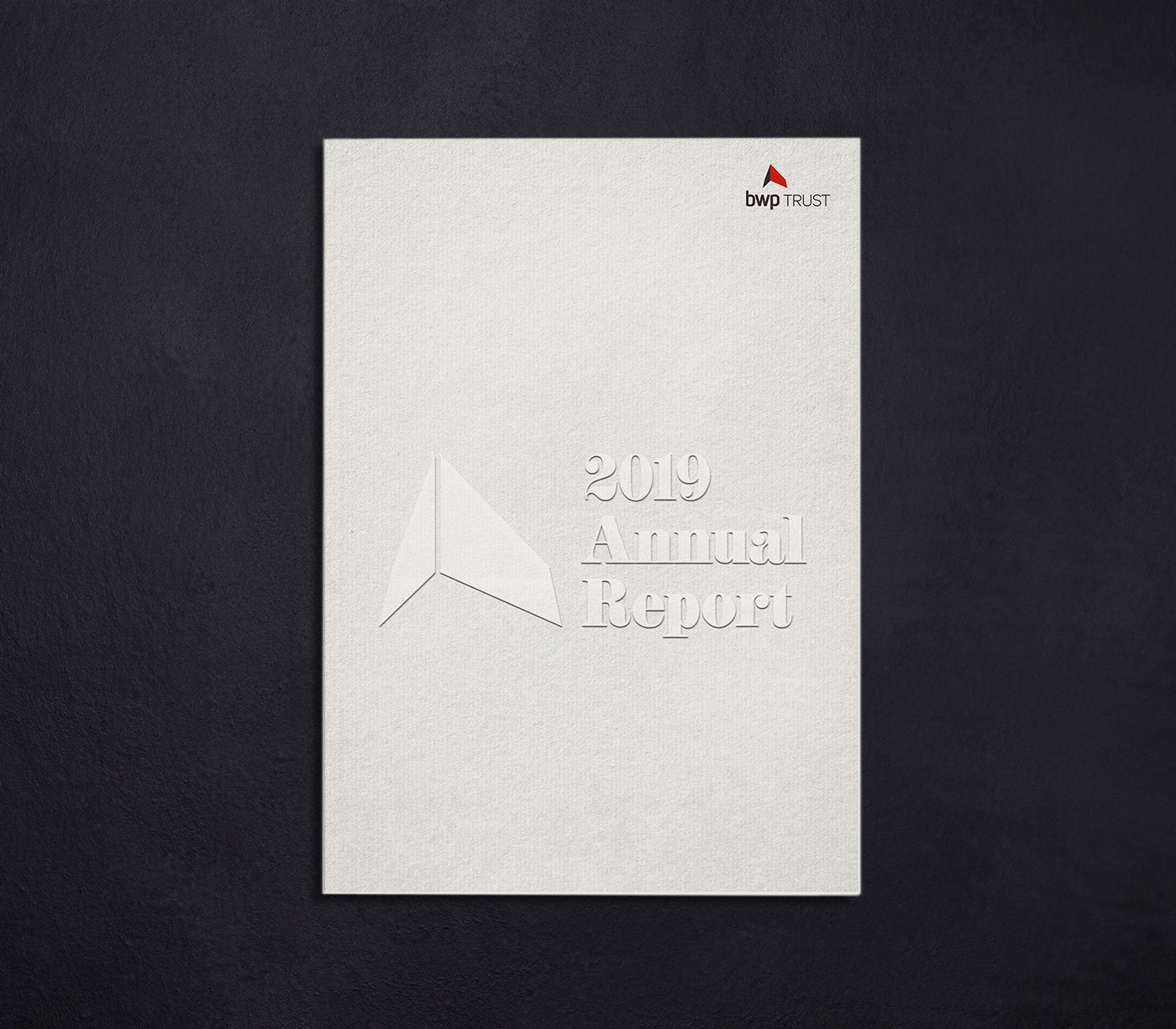 BWP 2019 annual report cover design